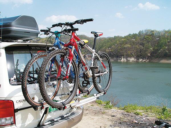 fiamma carry bike backpack heck fahrradtr ger von fiamma fahrradtr ger bei campingshop wagner. Black Bedroom Furniture Sets. Home Design Ideas